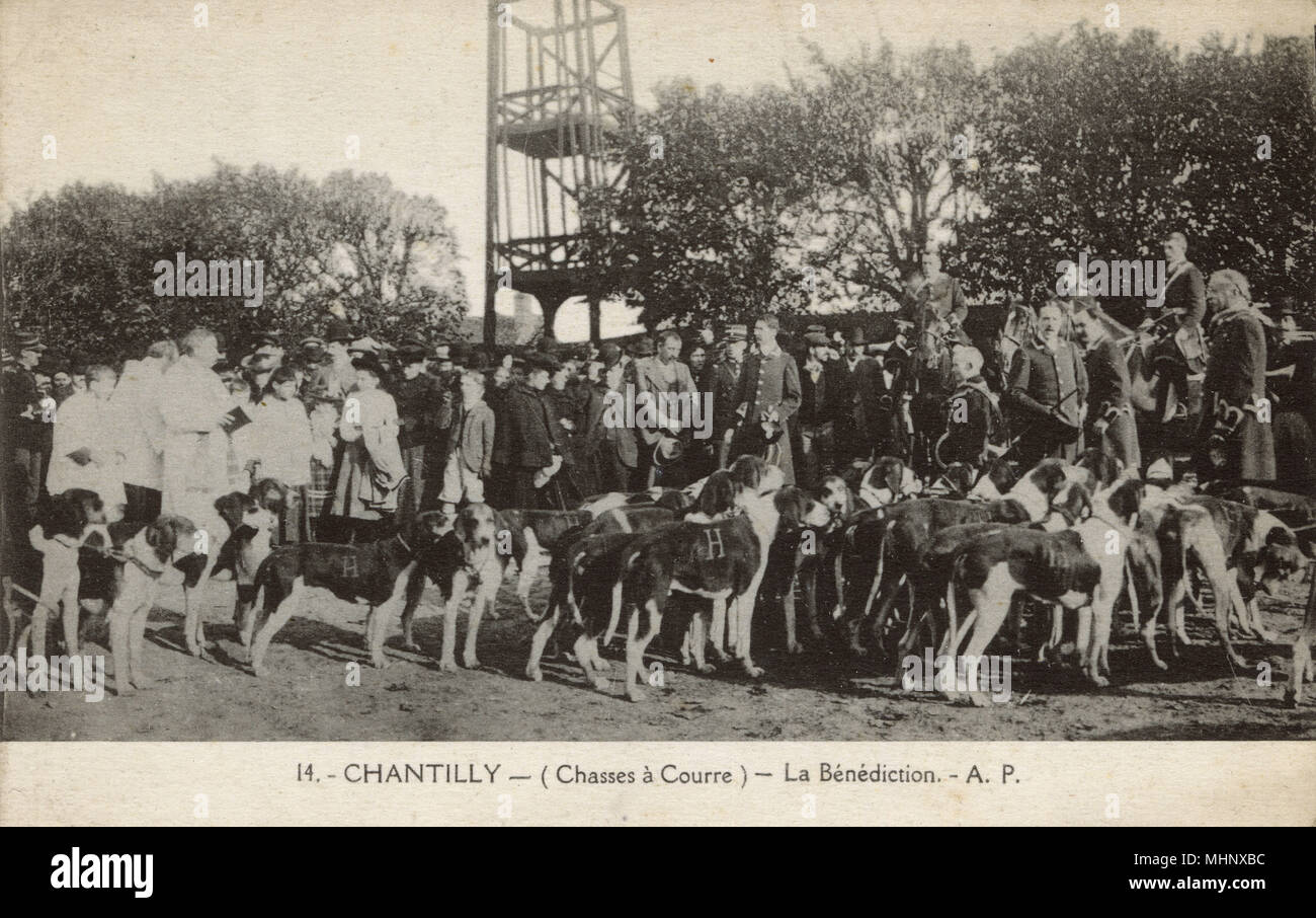 Hunting with dogs, La Benediction, Chantilly, France.      Date: circa 1910 - Stock Image