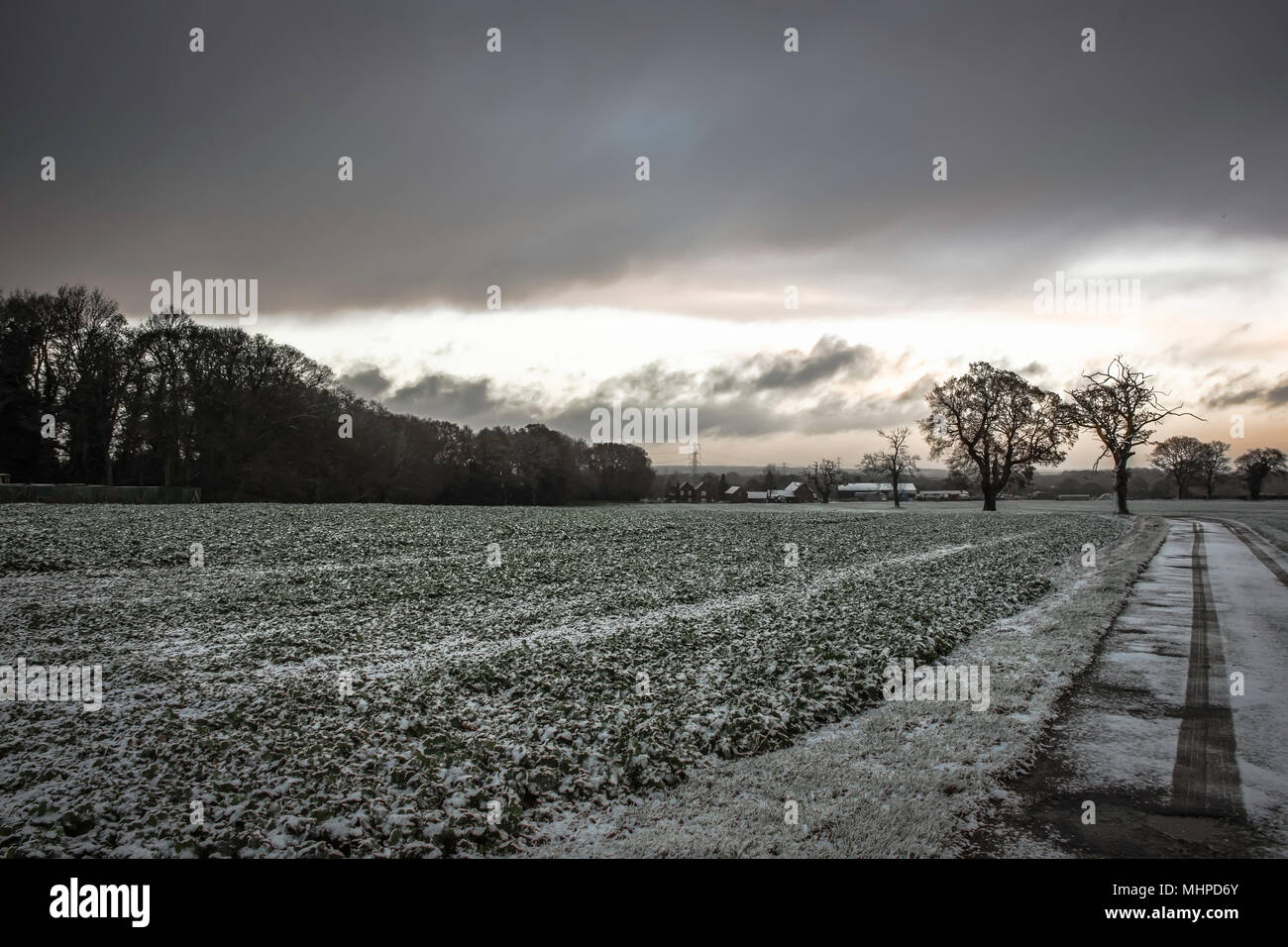 Sunrise over Staffordshire fields in winter.Lichfield ,Uk.Trees silhouettes,fields covered with frost and dramatic,dark sky with heavy clouds.Mood. Stock Photo