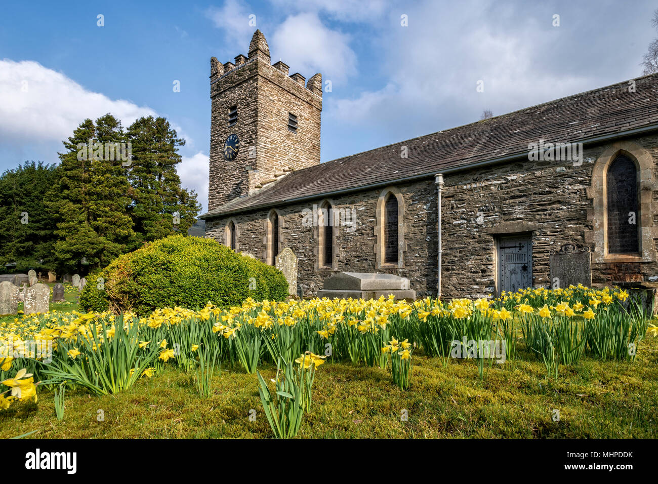Troutbeck church surrounded by Daffodils - Stock Image