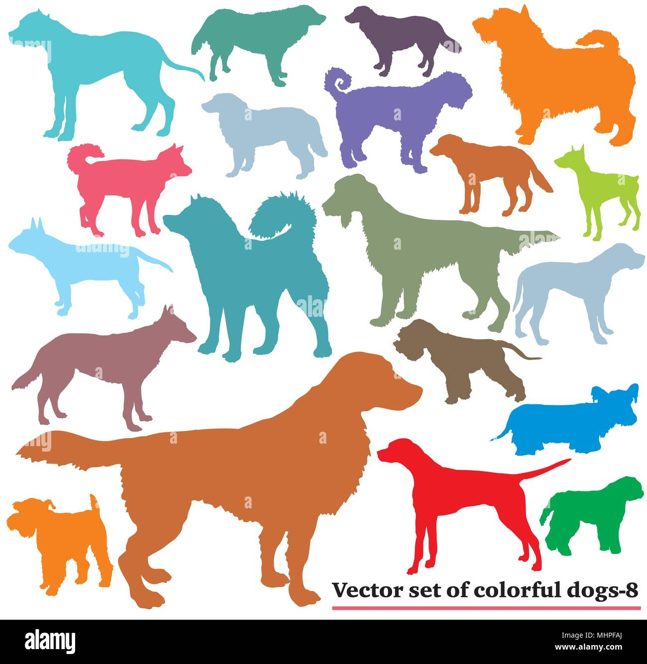 Vector set of colorful isolated different breeds dogs silhouettes on white background. Part 8 - Stock Vector
