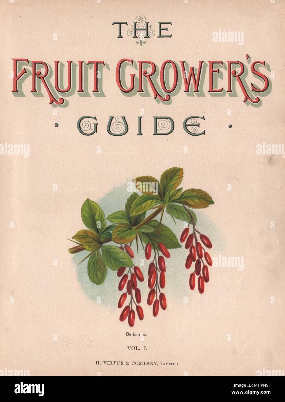 Title page Vol 1. BERBERRIES. WRIGHT Chromolithograph 1892 old antique print - Stock Image