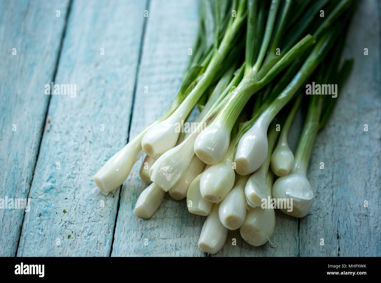 green purified onions - Stock Image