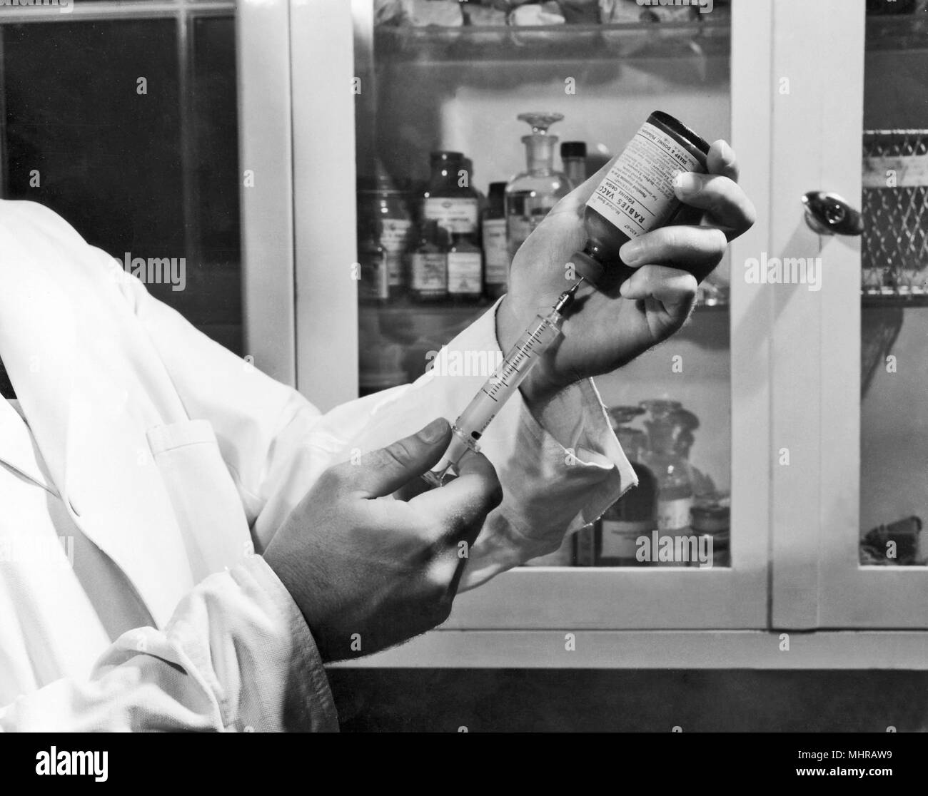 Centers for Disease Control (CDC) laboratorian filling a syringe with rabies vaccine, 1968. Image courtesy Centers for Disease Control. () - Stock Image