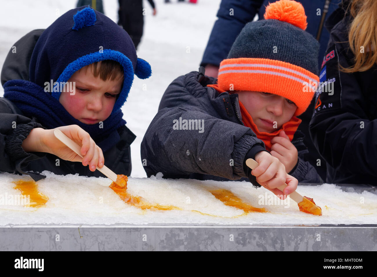 Two young boys eating maple syrup taffy poured on ice at a sugar shack in Quebec, Canada - Stock Image