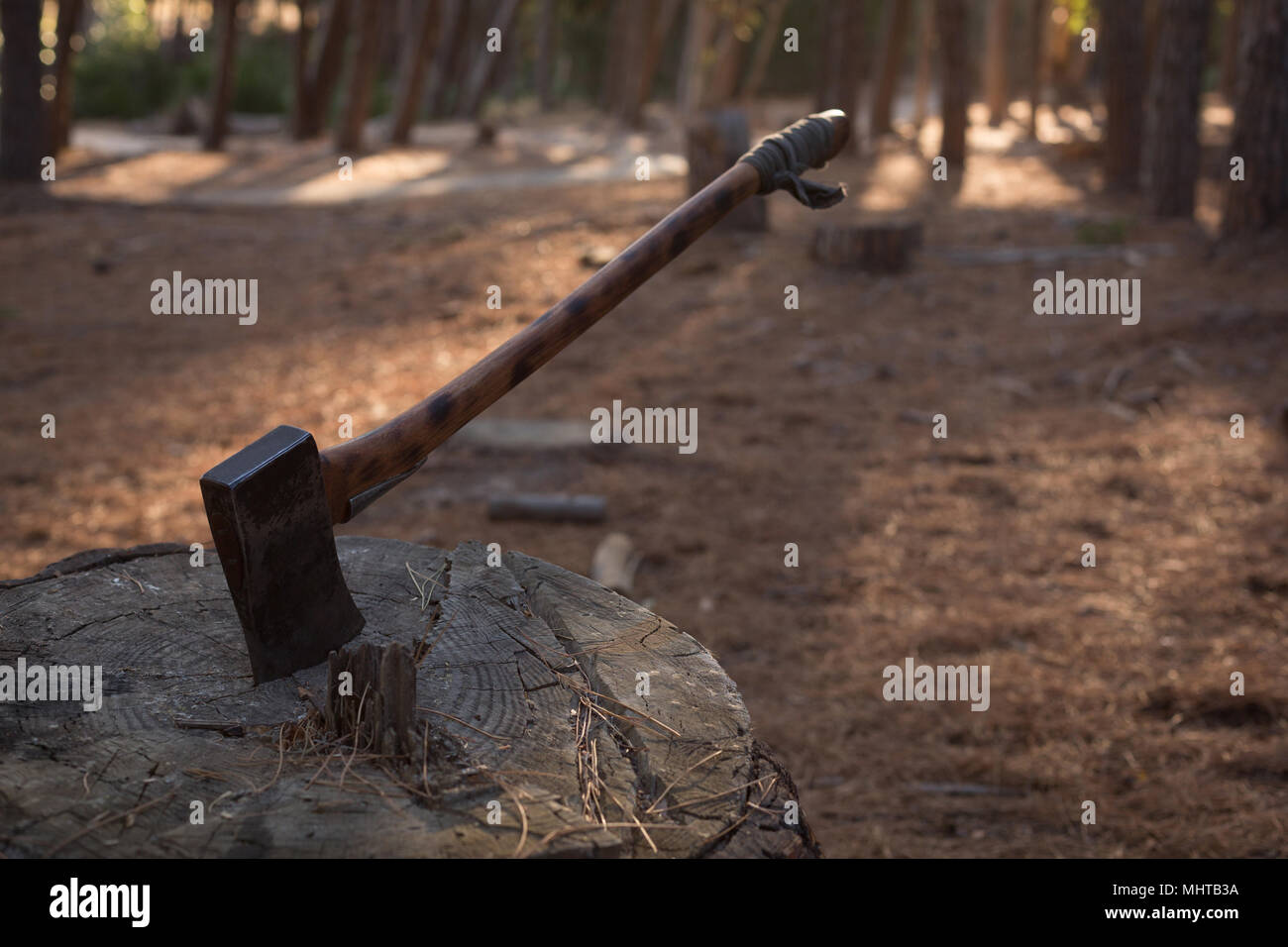An axe being thrust into a stump - Stock Image