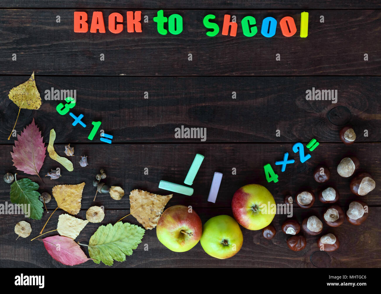 School theme  Autumn leaves, chestnuts and ripe apples on a