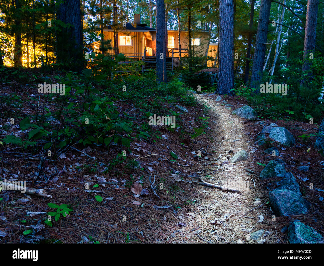 Ontario, Canada; cottage in the woods with illuminated path - Stock Image