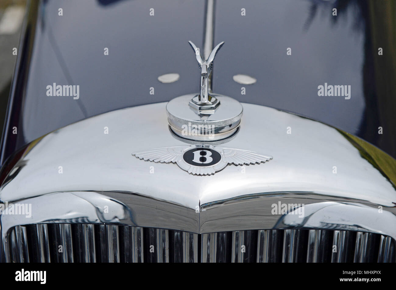 Bentley Emblem High Resolution Stock Photography And Images Alamy