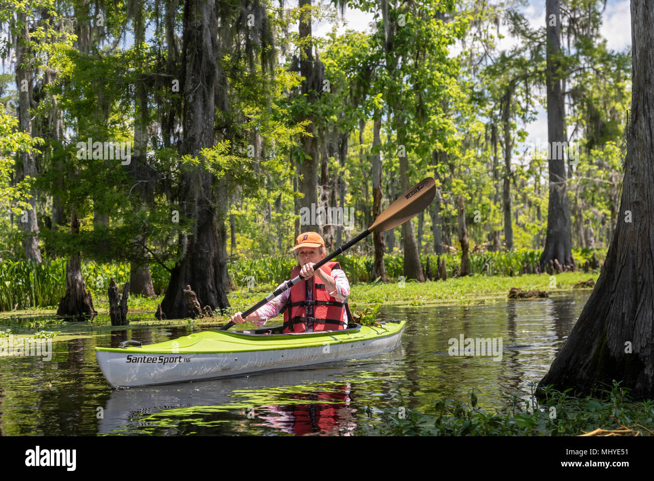 LaPlace, Louisiana - Maureen Sheahan participates in a kayak tour of Shell Bank Bayou near New Orleans. The tour was organized by Louisiana Lost Lands - Stock Image
