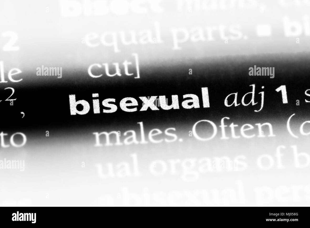 bisexual word in a dictionary. bisexual concept. - Stock Image