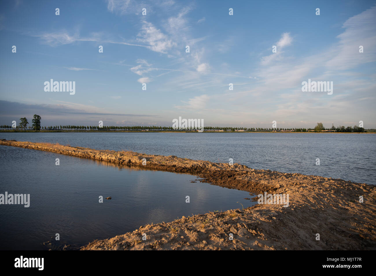 Division of flooded rice paddies in Piedmont, Italy at sunset - Stock Image