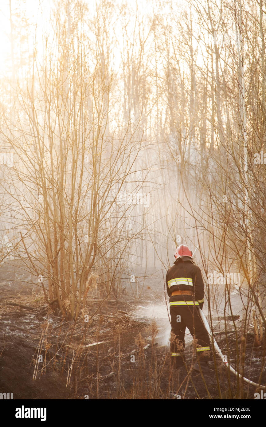 Rescuers extinguish forest fire - Stock Image