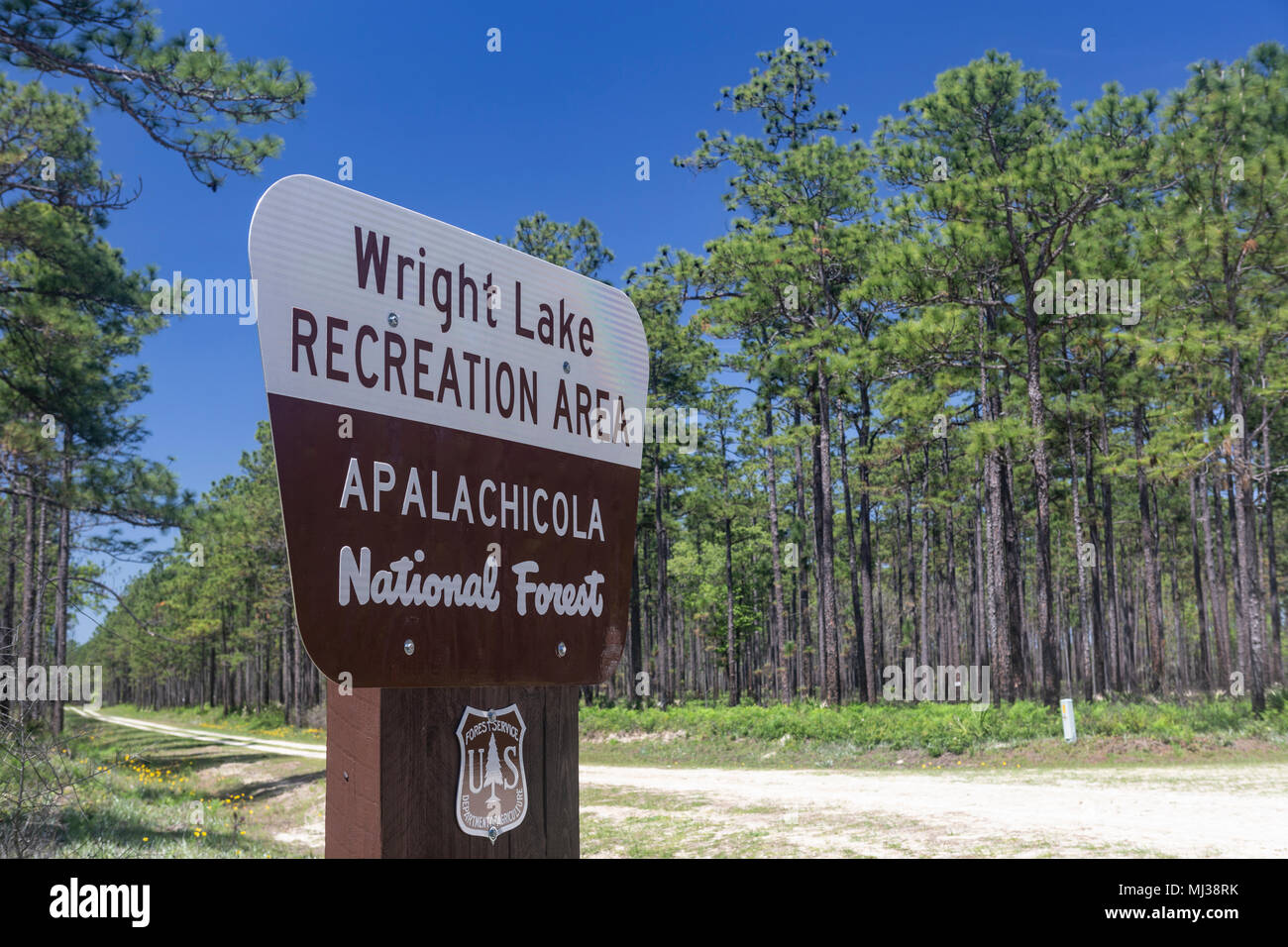 A sign marks the entrance to Wright Lake Recreation Area in Apalachicola National Forest in the panhandle of Florida. - Stock Image