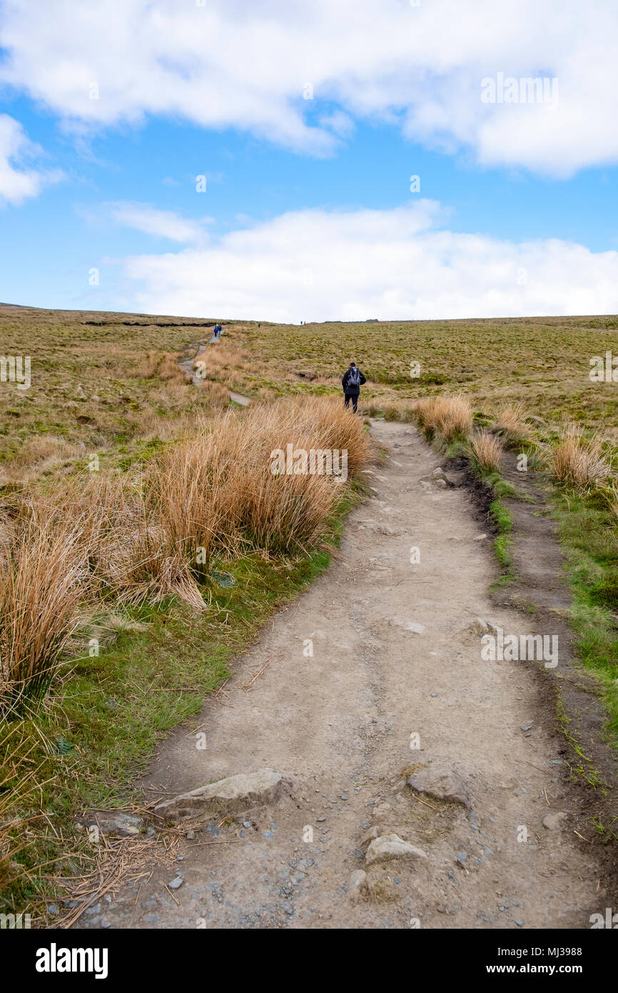 Walker doing The Three Peaks Challenge , North Yorkshire, England - Stock Image