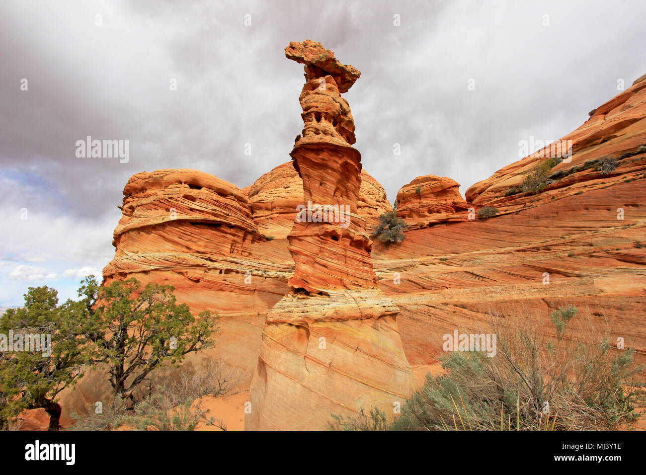 Chess Queen, a rock formation near The Wave at Coyote Buttes South CBS, Paria Canyon Vermillion Cliffs Wilderness, Arizona - Stock Image