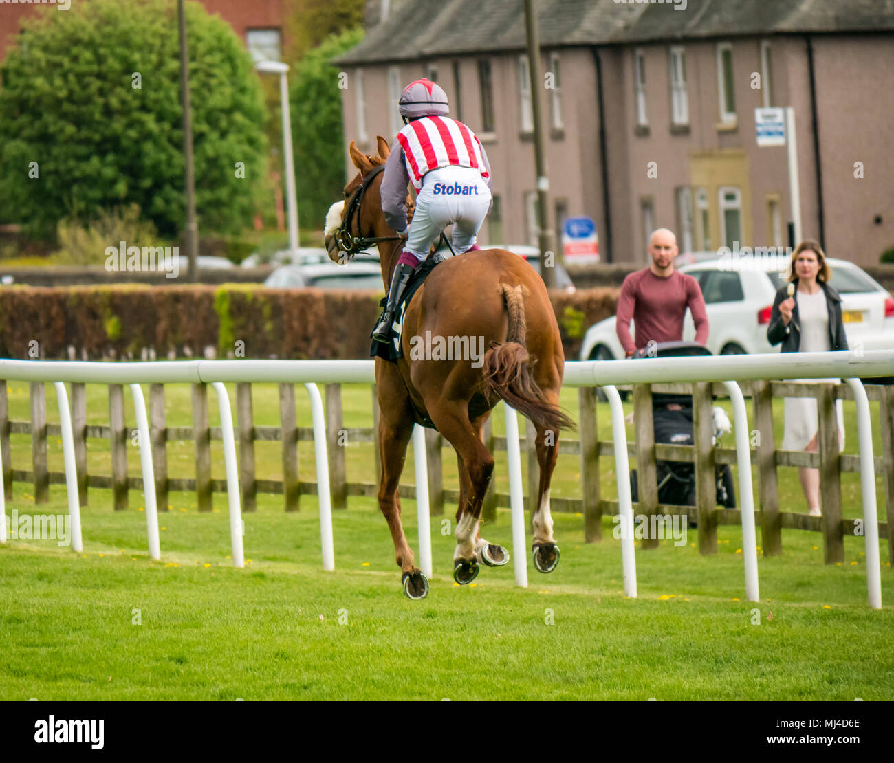 Musselburgh, Scotland, 4 May 2018. Musselburgh Race Course, Musselburgh, East Lothian, Scotland, United Kingdom. A race horse gallops to the start at the afternoon flat horse racing meet. Horse 'Suwaan' ridden by jockey James Sullivan from Ireland in the 2.40 Boogie in the Morning Handicap - Stock Image