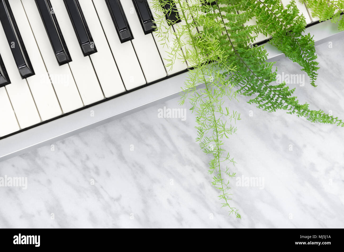 Sounds of nature. Electric piano keys and green fern leaves, on marble background. - Stock Image