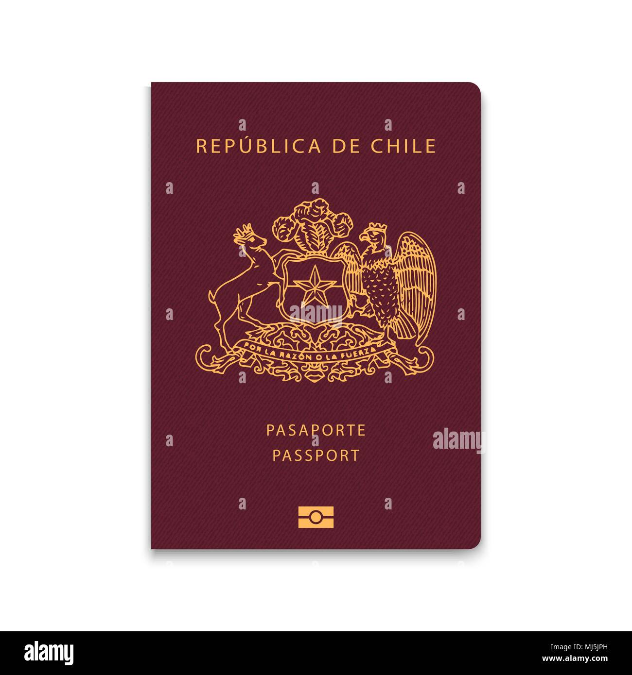 Passport of Chile. Vector illustration - Stock Image