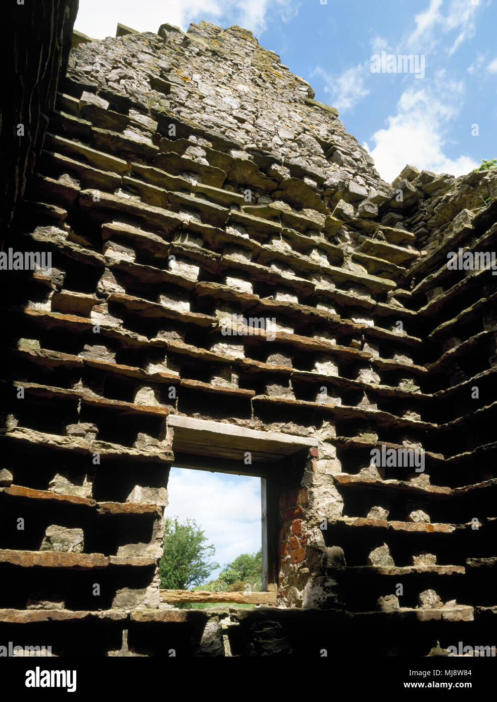 Nesting boxes inside ruined 17th century tall square dovecote at Gop Farm, Trelawnyd, Flintshire, North Wales, UK. Contained around 700 nest boxes. Stock Photo