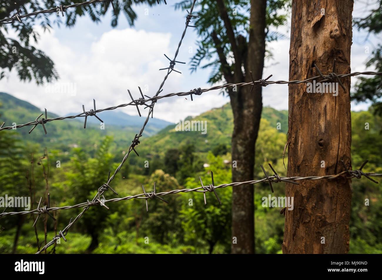 Marking Border Of Farm Land. Bad Influence On Nature