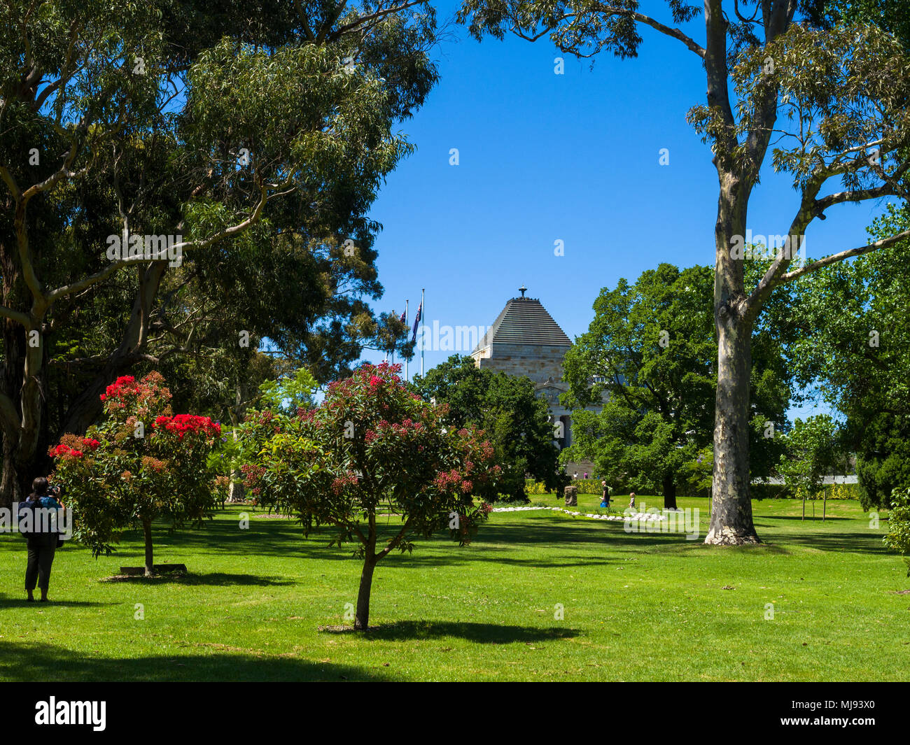 Kings Domain parkland with view of the Shrine of Remembrance, Melbourne, Victoria, Australia. - Stock Image
