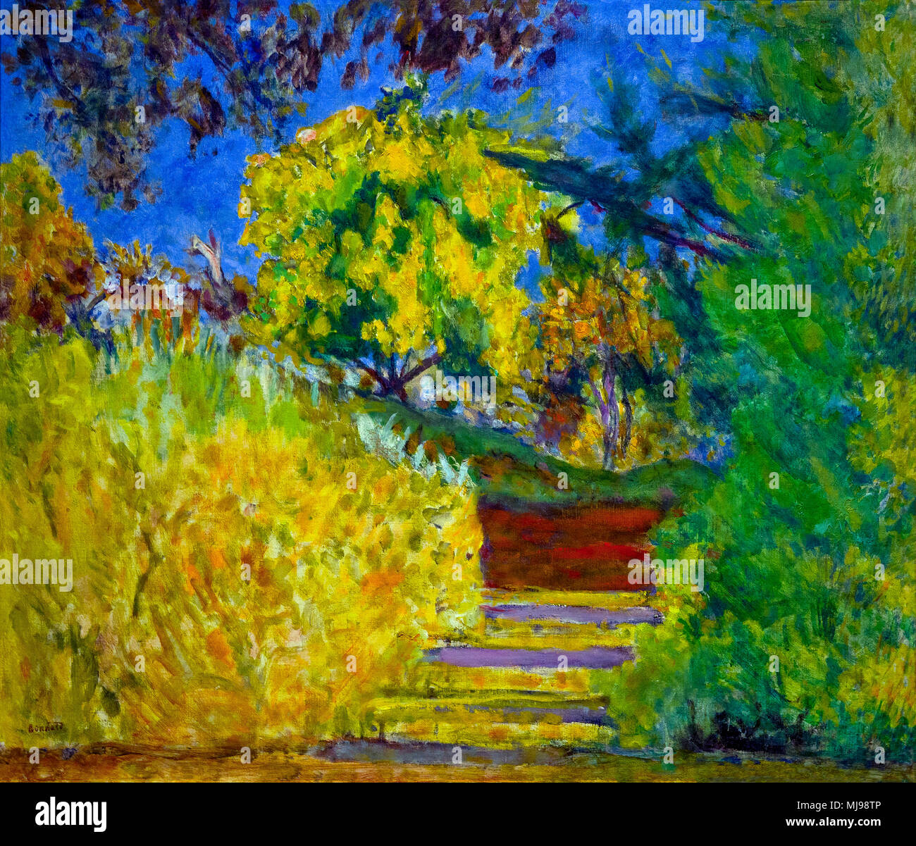 Stairs in the Artist's Garden, 1942-1944, Pierre Bonnard, National Gallery of Art, Washington DC, USA, North America - Stock Image