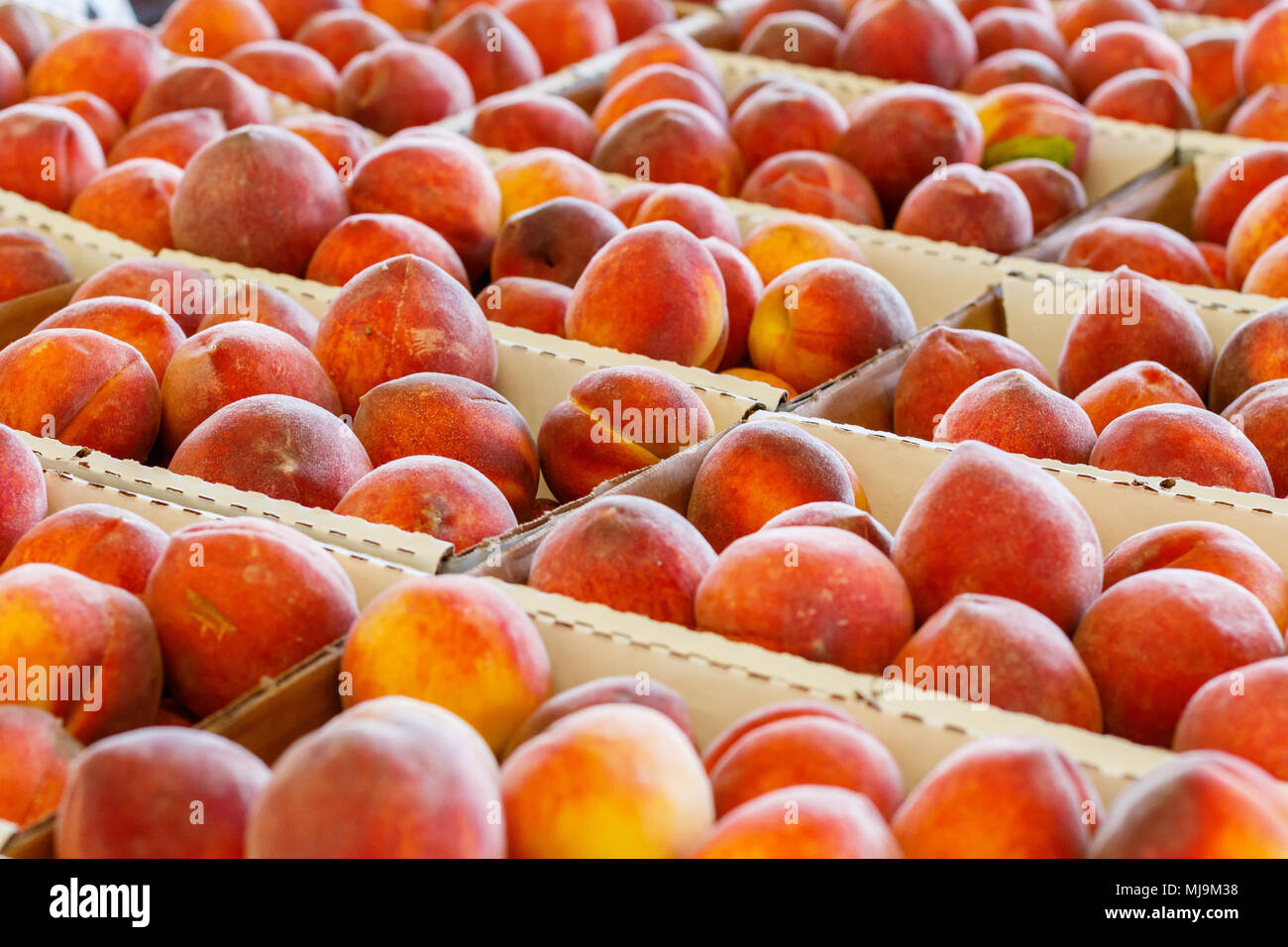 Fresh Peaches at a Farmers Market. - Stock Image