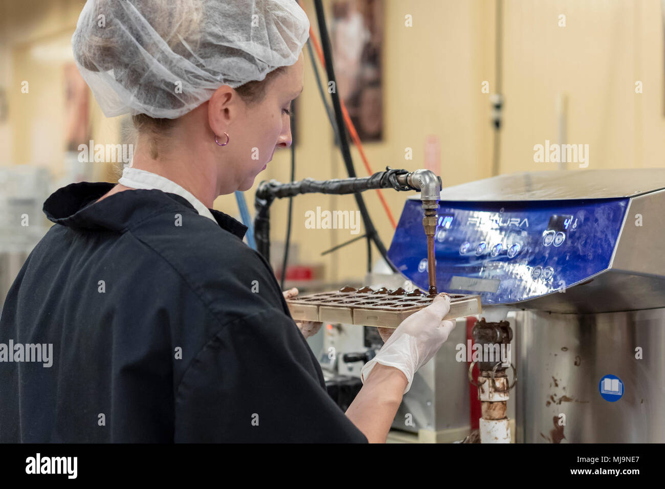 St. Augustine, Florida - A worker at the Whetstone Chocolates factory. The company makes and sells artisan chocolates in St. Augustine's historic dist - Stock Image