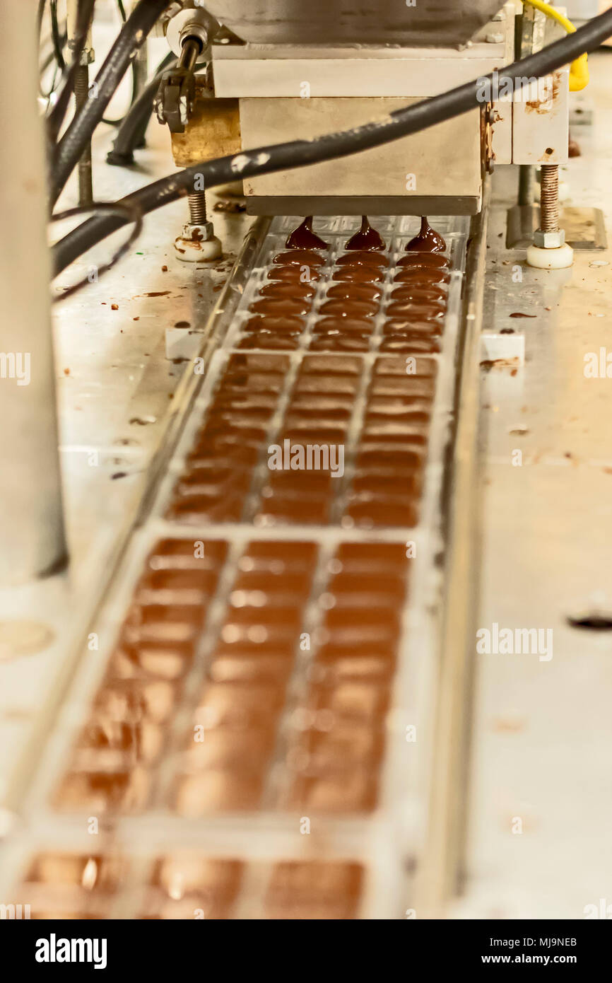St. Augustine, Florida - Chocolates being made at the Whetstone Chocolates factory. The company makes and sells artisan chocolates in St. Augustine's  - Stock Image
