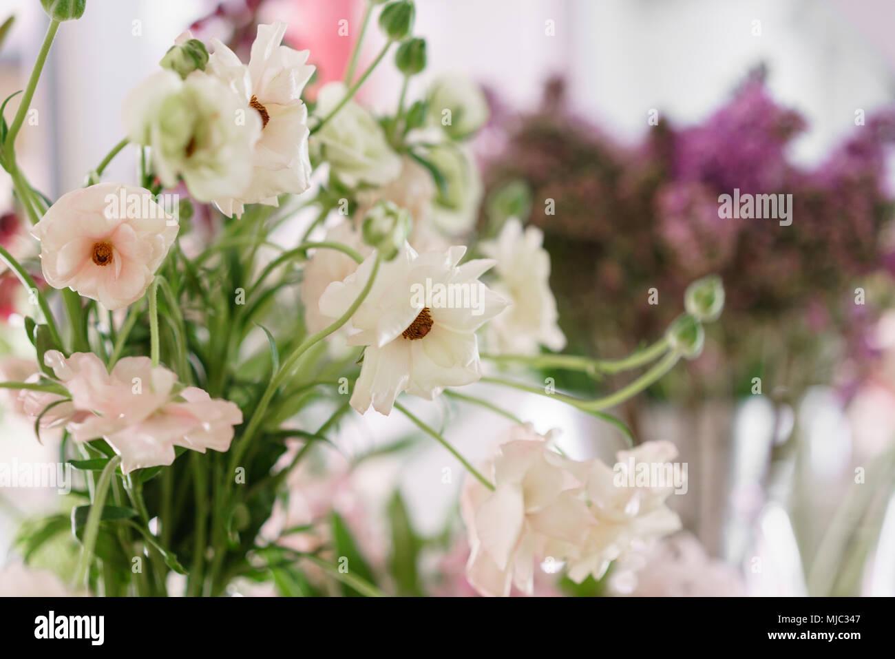 Flower Shop Concept Different Varieties Fresh Spring Flowers In