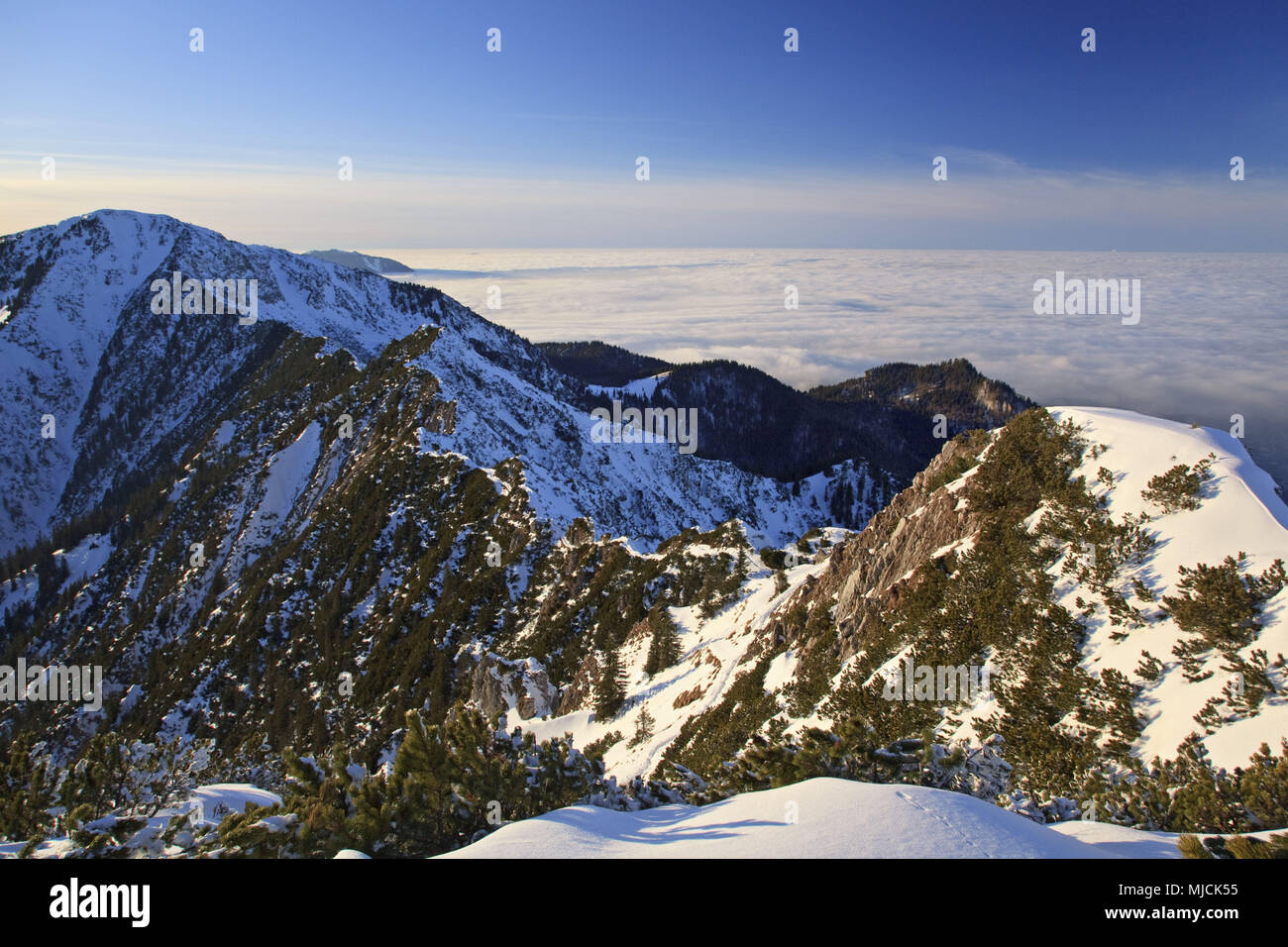 View from mountain Herzogstand to Heimgarten, Bavarian Alpine Foreland, Alpine foreland, alps, Bavarian uplands, Upper Bavaria, Bavaria, South Germany, Germany, - Stock Image