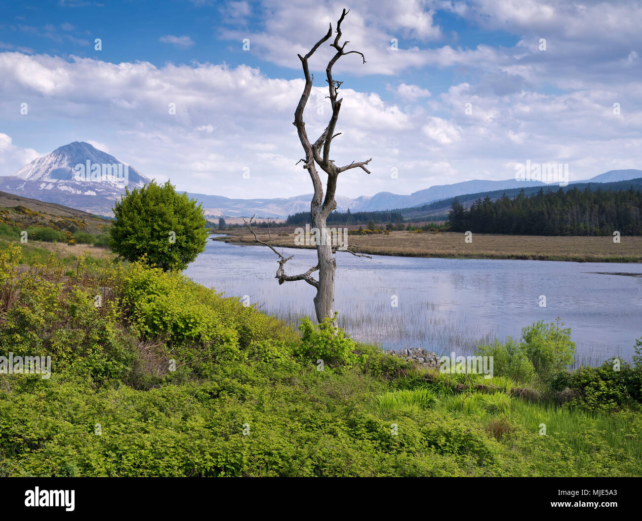 Ireland, Donegal, Glenveagh national park, view to the Mount Errigal at the Lough Nacung - Stock Image