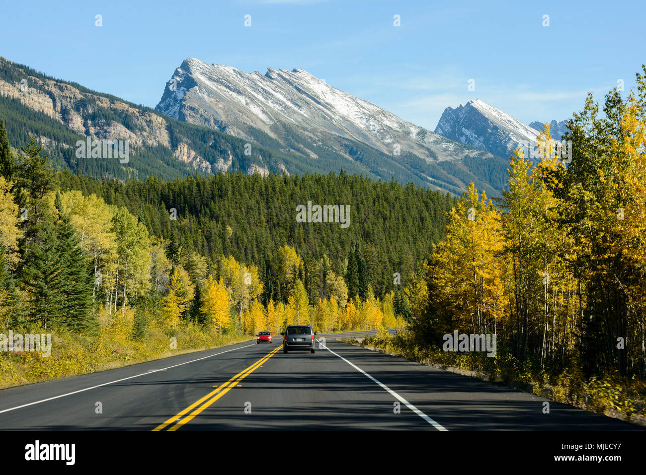 Icefields AB-93 road, Rocky Mountains, car, adventure, trip, line, marking, mountain, forest - Stock Image