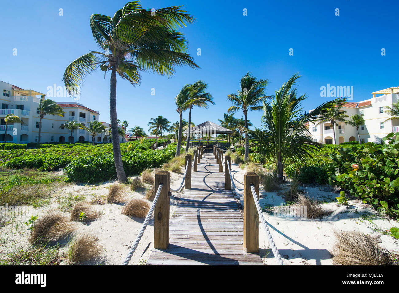 Wooden pathway leading to the turquoise waters of Providenciales, Turks and Caicos - Stock Image