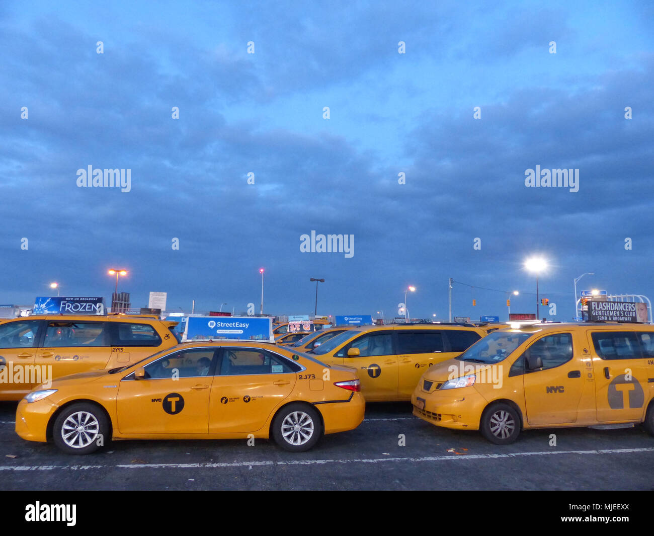Yellowcabs licensed by NYC Taxi & Limousine Commission, wait at JFK Central taxi Hold, for their turn to pick up airline passengers - Stock Image