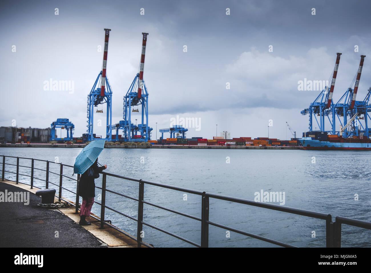 melancholic scene lonely woman umbrella look at Genoa port rainy - Stock Image