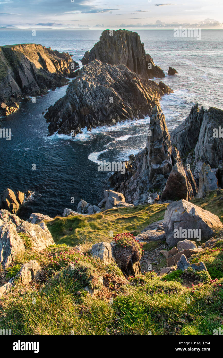 This is a picture of the sea cliffs and rocky coast at Malin Head in Ireland. This was the film location of the last Star Wars movie - Stock Image