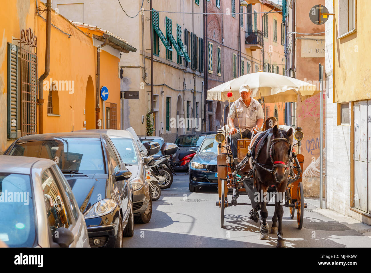 Pisa, Italy - May 4, 2018 - Coachman driving a horse drawn cart on a narrow city street in Pisa - Stock Image