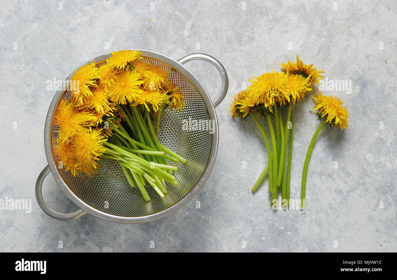 Freshly picked dandelion flowers with stalks on table - Stock Image