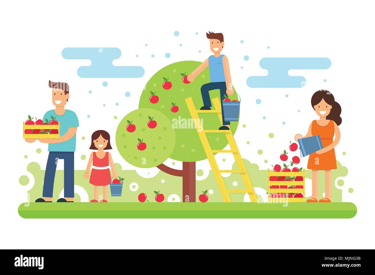 A happy family collects apple crops. Father, mother, son and the youngest daughter are collecting apples in the garden. Vector illustration. Joint wor - Stock Vector