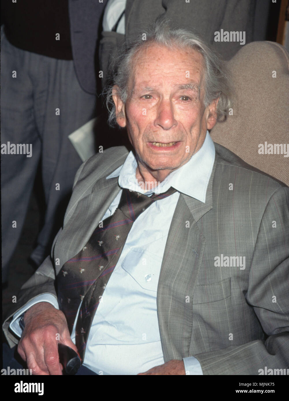 Samuel Fuller Waist-Up Seated --- ' Tsuni / - 'Samuel Fuller   Samuel Fuller   one person, Vertical, Best of, Hollywood Life, Event in Hollywood Life - California,  Red Carpet Event, Vertical, USA, Film Industry, Celebrities,  Photography, Bestof, Arts Culture and Entertainment, , , Topix - Stock Image