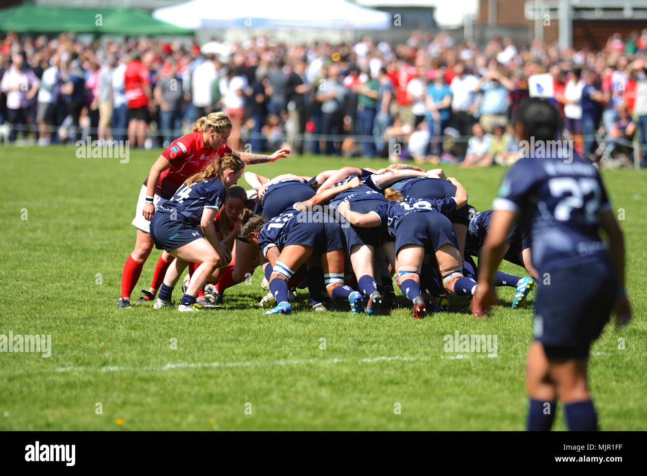 London, UK, 5 May 2018. Royal Navy and British Army players locked into a scrum during the annual women's annual inter-service competition match at Kneller Hall, London, UK.  The match was won by the British Army, 72-3.    In 2003 a Women's Inter-Service Competition was introduced to run alongside the men's competition. The inaugural competition was won by the Army and since its inception they'v Credit: Michael Preston/Alamy Live News - Stock Image