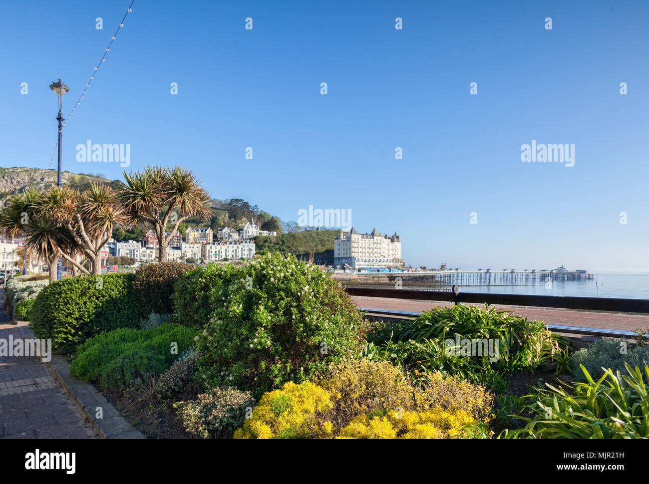 Gardens and pier on Llandudno seafront on sunny May Day weekend. - Stock Image