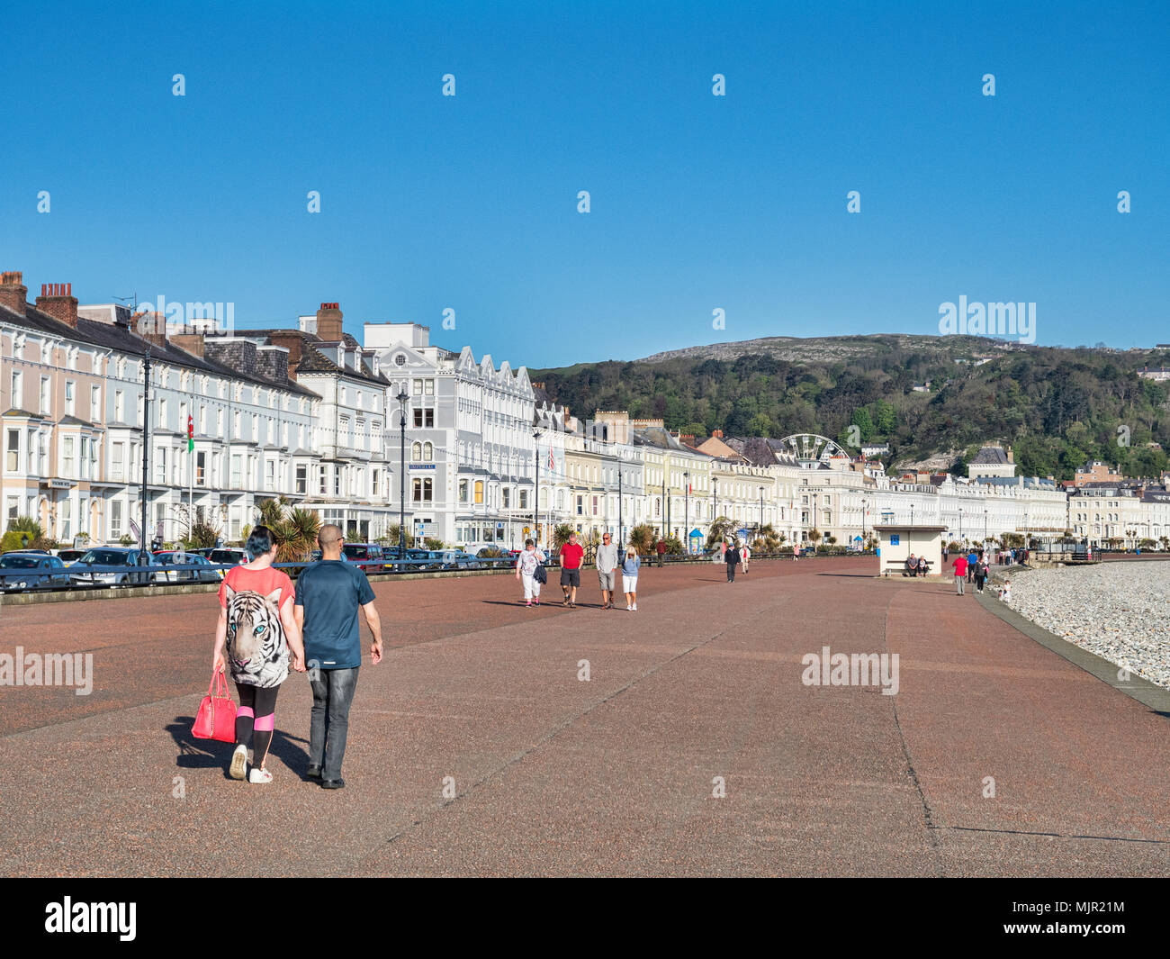 6 May 2018: Llandudno, North Wales - People out on Llandudno Promenade for an early morning stroll on the sunny May Day weekend. - Stock Image