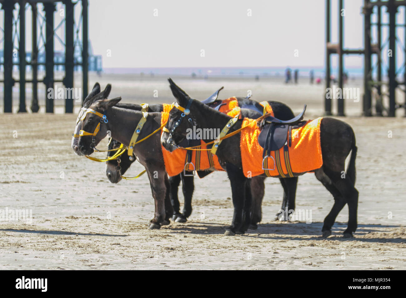 Blackpool Lancashire. UK Weather. 06/05/2018.  Sunny start to the day on the Fylde Coast as the north-west coast experiences the hottest temperatures so far this week. Credit: MediaWorldImages/AlamyLiveNews Stock Photo