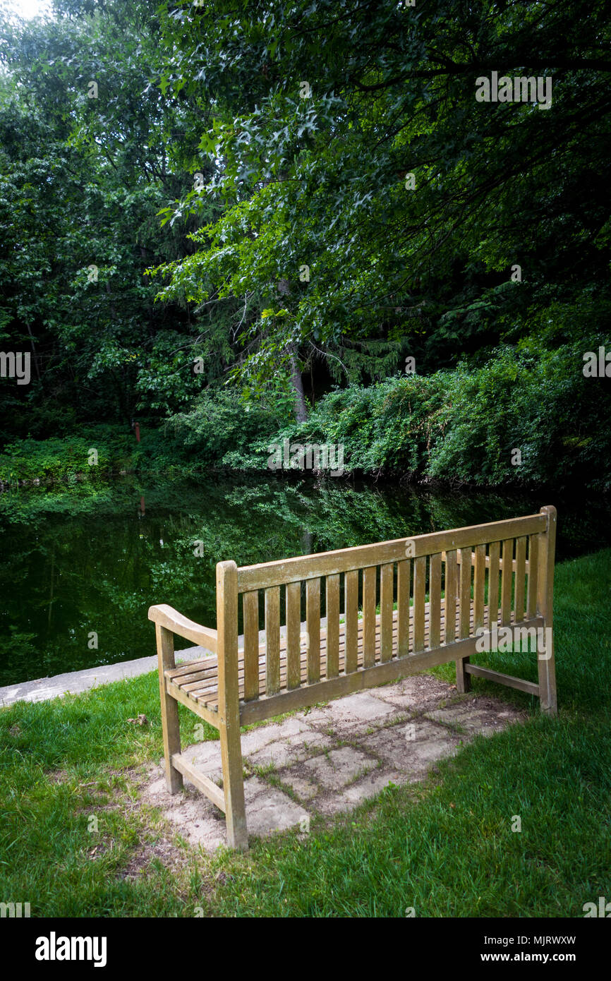 Peachy An Empty Wooden Bench Overlooking A Small Pond Surrounded Bralicious Painted Fabric Chair Ideas Braliciousco
