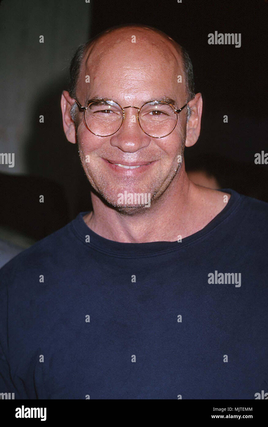 Pileggi Mitch(X-Files).JPGPileggi Mitch(X-Files)  Event in Hollywood Life - California,  Red Carpet Event, Vertical, USA, Film Industry, Celebrities,  Photography, Bestof, Arts Culture and Entertainment, Topix Celebrities fashion /  from the Red Carpet-1994-2000, one person, Vertical, Best of, Hollywood Life, Event in Hollywood Life - California,  Red Carpet and backstage, USA, Film Industry, Celebrities,  movie celebrities, TV celebrities, Music celebrities, Photography, Bestof, Arts Culture and Entertainment,  Topix, headshot, vertical, from the year 2000, inquiry tsuni@Gamma-USA.com Credit  - Stock Image