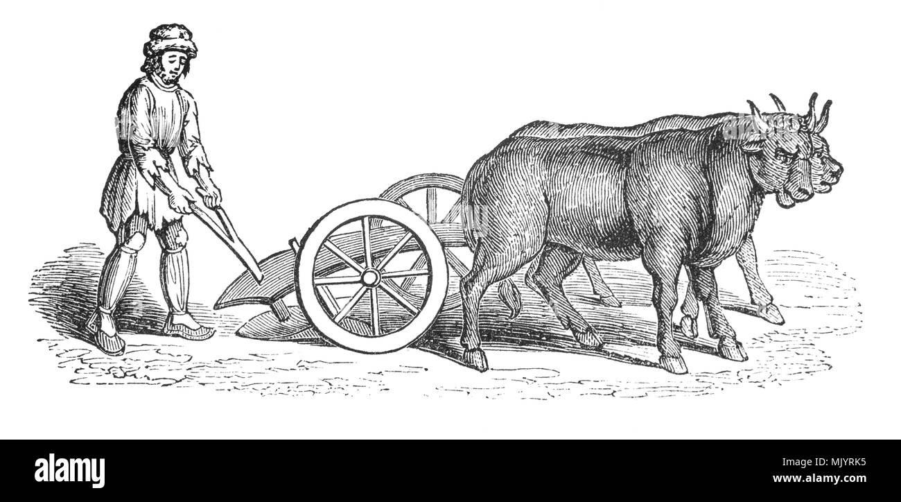 Spit n plough scene 1