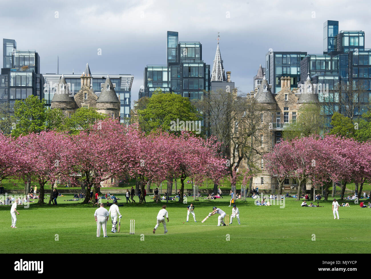 A cricket match taking place in the Meadows, Edinburgh with the apartments in the Quartermile in the distance. - Stock Image