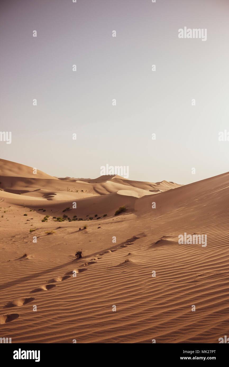 Sanddünen in Wüste bei Abu Dhabi Vereinige Arabische Emirate - Stock Image